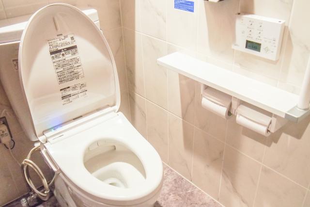 タイ トイレットペーパー ホテル,タイ トイレ 流れない,タイ トイレ 紙
